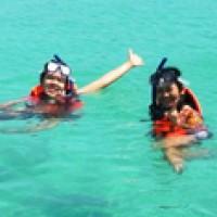 เกาะเล้าเป็ด-เล้าไก่-คลิปวีดีโอใต้น้ำ-hdชมปลาการ์ตูนและดอกไม้ทะเล