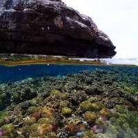 ดำน้ำตื้น-snorkeling-โทร-062-892-9946-เกาะร้านเป็ด-เกาะร้านไก่-เกาะทะล