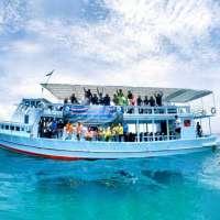 ดำน้ำเกาะทะลุ-one-day-trip-koh-talu-浮潜-โทร-081-995-3787บางสะพาน-ประจ